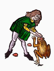 toadstone 1491