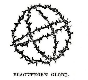 Blackthorne_Globe