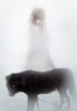 wolf-scal-cu